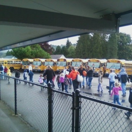 Children and adults walk through the rain to in a school parking lot. They are doing an earthquake drill. There are buses in the background and a fence in the foreground.