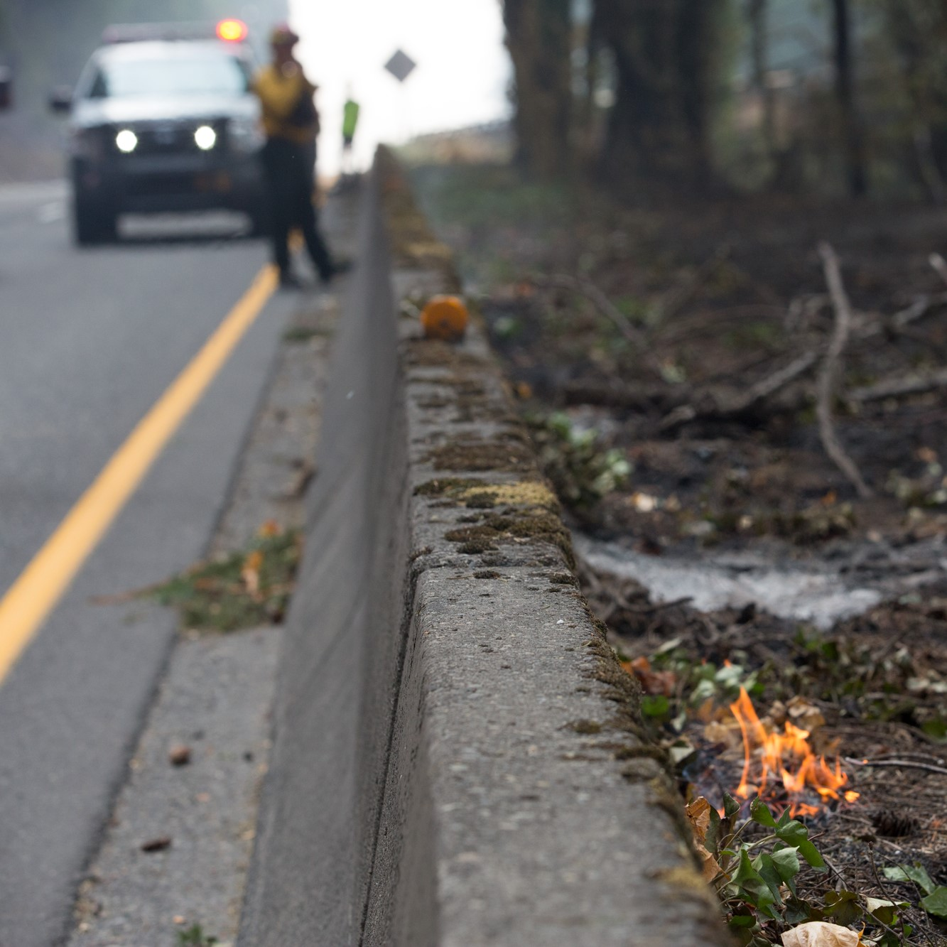 Small brush fire by the side of the road during Eagle Creek Fire. US Forest Service worker is standing next to their vehicle in the background.